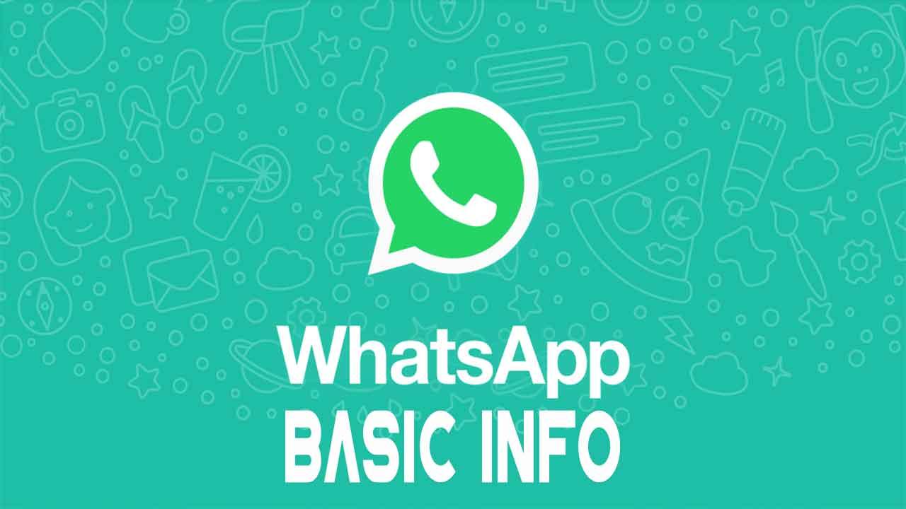 whatsapp_basic_info